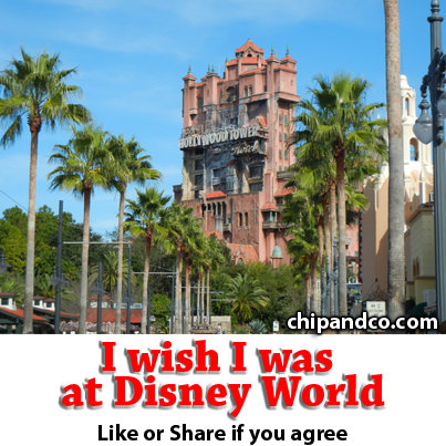 What is the Best Quick Service at Disney's Hollywood Studios?