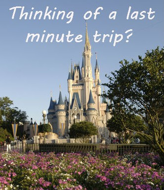 What Kind of Ticket Do I Need for Disney's 24 Hour Event?