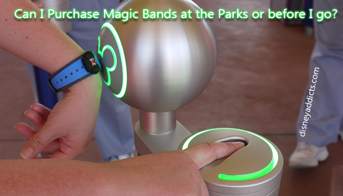 Can I Purchase Magic Bands at the Parks or before I go?