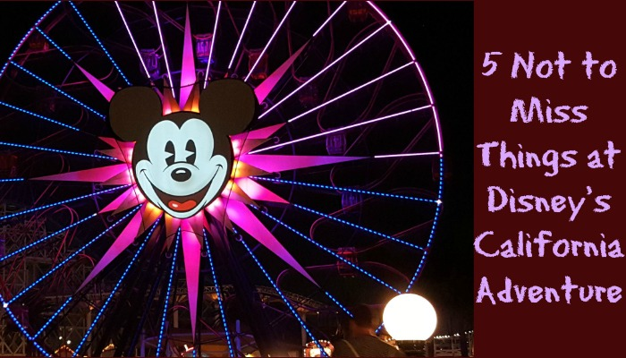 Top 5 Not to Miss Things at Disney's California Adventure