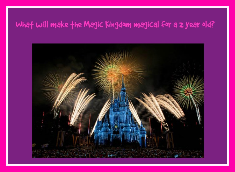 What will make the Magic Kingdom Magical for a 2 year old?