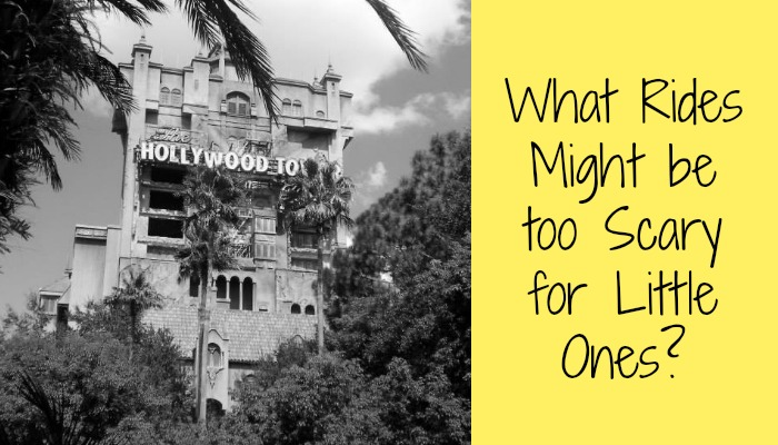 What Disney World Rides Might be too Scary for Little Ones?