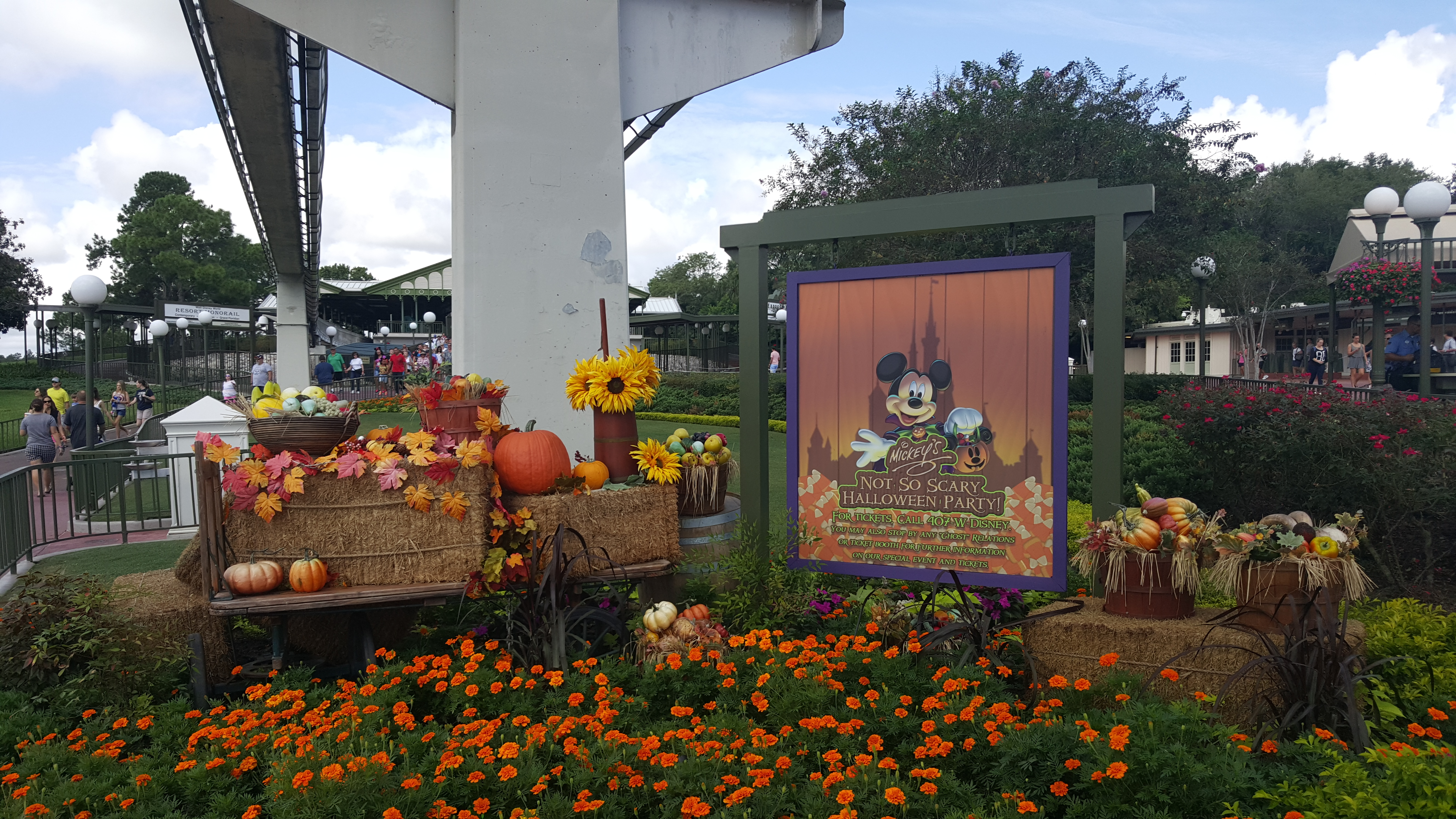 When Will Tickets Go on Sale for Mickey's Not So Scary Halloween Party?