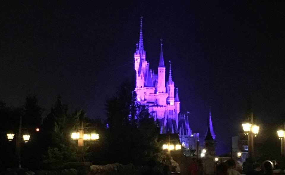 What Is Magic Kingdom's Kiss Goodnight?