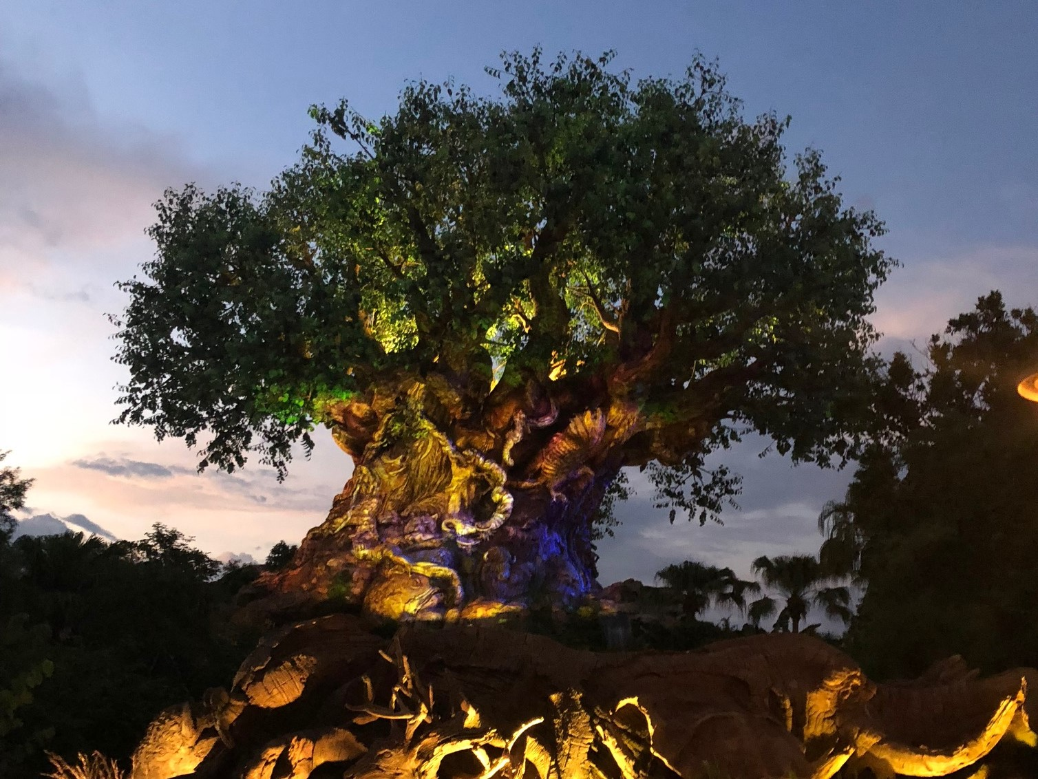 5 Rookie Mistakes to Avoid at Disney's Animal Kingdom