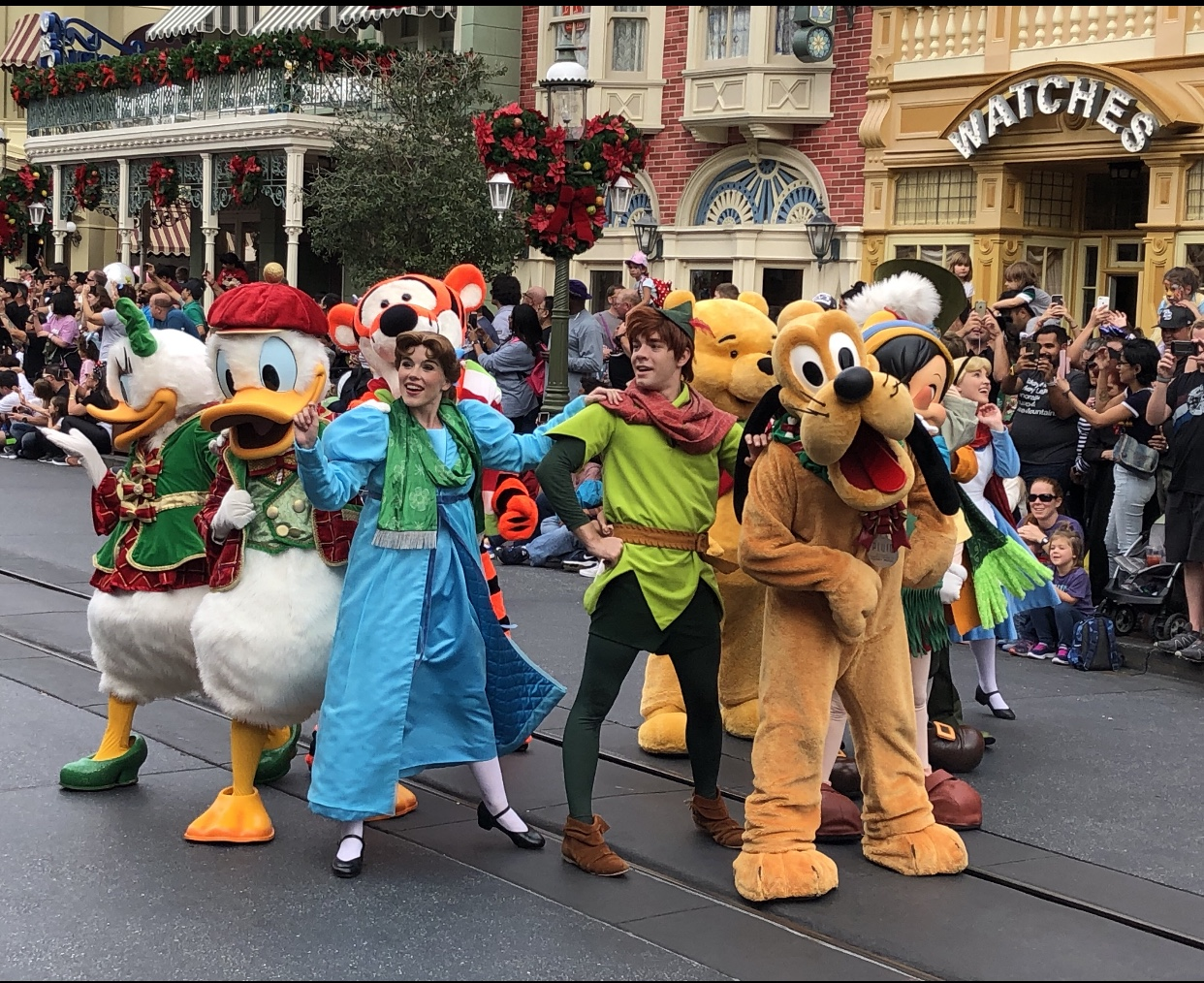 5 Great Reasons to Visit Mickey's Very Merry Christmas Party!!