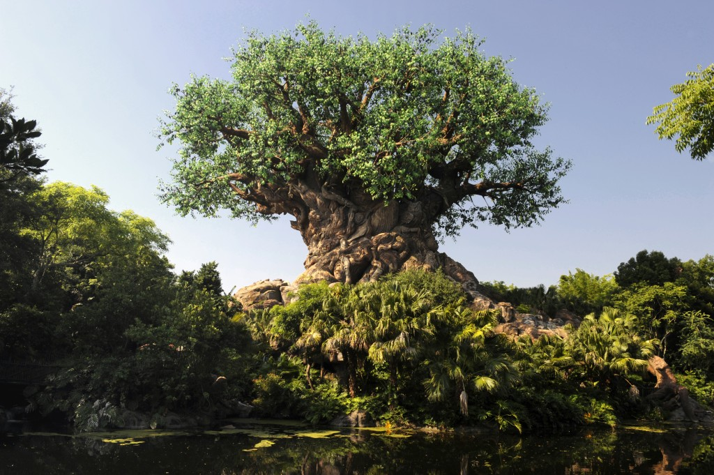 6 Best Restaurants for Dinner at Disney's Animal Kingdom