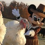 Disney chefs Thanksgiving tips