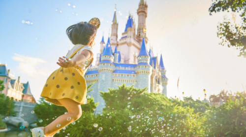 January is an excellent time to plan a Disney World Vacation!